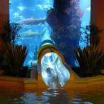 Shark Tank Water Slide!
